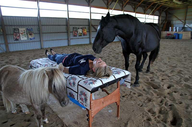 Energy Healing with Horses Workshops Phelpston, Ontario