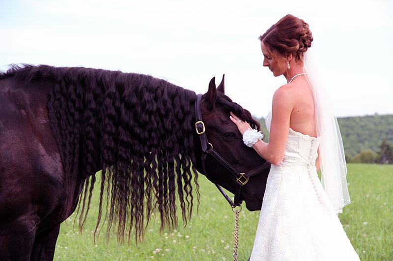 Hawks Landing Country Barn Wedding & Events