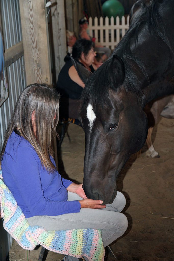 Spend time among the horses during a Hawks Landing weekend retreat