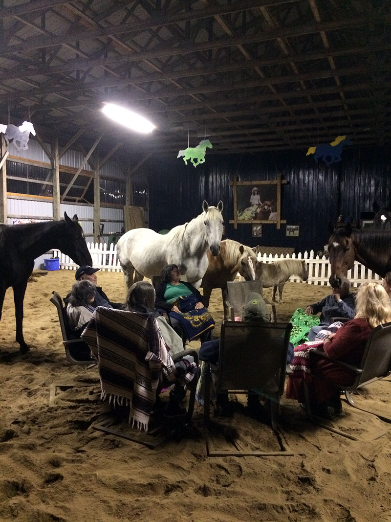 Group meditation with the horses