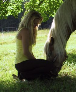 Sunday Meditation with the Horses @ Hawks Landing Horse Farm