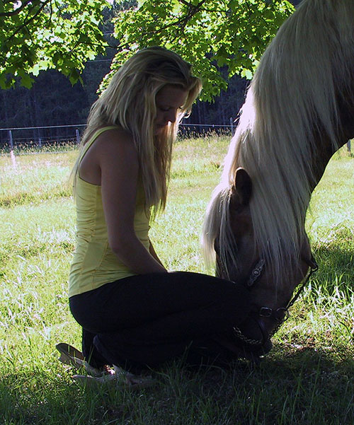 Meditation with Horses Services
