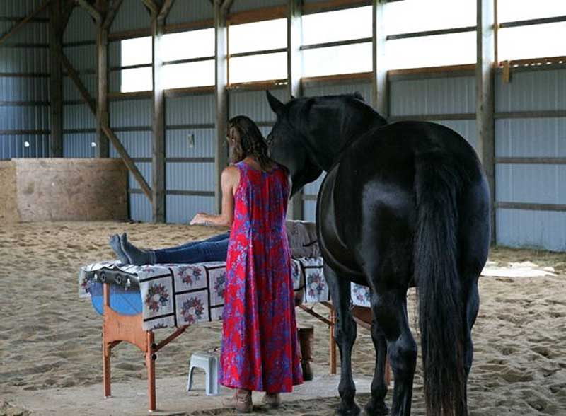 Reiki Healing with the Horses